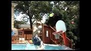 Басейн , баскетболен кош и младежи - добри изпълнения