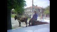 Лакътеца - Селският Бизнесмен 2 Част