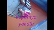 kopaniya yakata