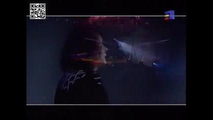 Iris - Floare de iris - live-превод