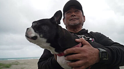 Name a more iconic duo! Boston Terrier and owner clean debris from Japanese beach during daily walks