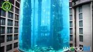 Адският аквариум в лобито на хотел