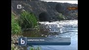 Хиляди измрели риби в река Банска край Димитровград