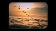 Атлас - Последната Птица