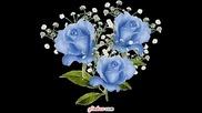 Ваня Вълкова цвете за обич
