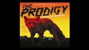 The Prodigy - Rok-weiler (the Day Is My Enemy)