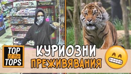 Най-големите нещастници на света - да си умреш от смях!
