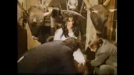 ibrahim tatlises film 1980