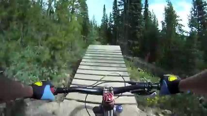 Red Bull Downhill Mtb Trestle Bike Park