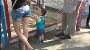 Малкият си хареса какичката