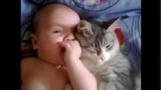Любовта между бебе и котка .