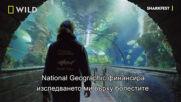 National Geographic Explorer   Андрей Гайч