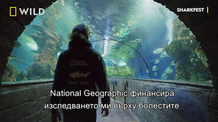 National Geographic Explorer | Андрей Гайч