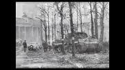 Panzer - Wehrmacht Edelweiss