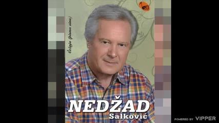 Nedzad Salkovic - Da zna zora - (audio) - 2010