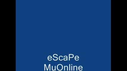 www.euphoriamu.com