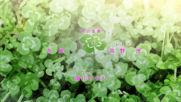 Sono Toki Kanojo wa - 06 [ B G ] [ H D ]