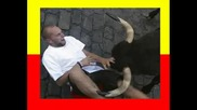Aka Toro Punkreas