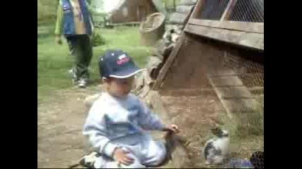 В Зоопарка - Добрич