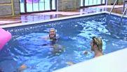 Забавленията с розовото фламинго в басейна