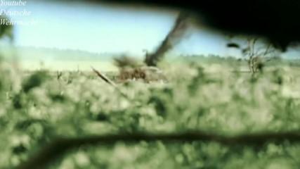 Neues Panzerlied - Panzer fahrn - Der Hauer
