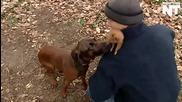 Този човек е намерил вероятно най-добър приятел за неговия любимец катерица