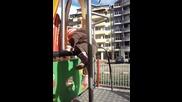 урок по катерене rotate