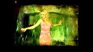 Kамелия - Залеза и зората