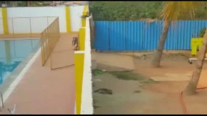 """Леопард """"щурмува"""" индийско училище, рани шестима (ВИДЕО)"""