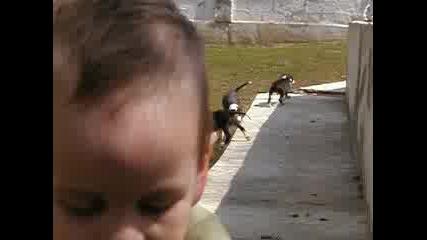 Много Бебета На Моравата