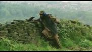 Гарван с експлозив смъртоносното оръжие на талибаните