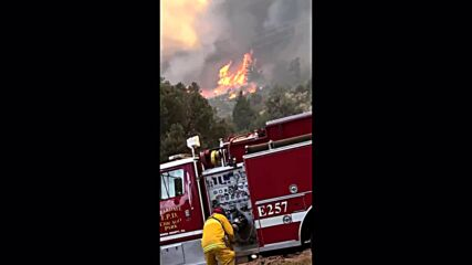 USA: Firefighters continue to battle California's Dixie fire as blaze expands over 84,000 hectares