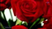 Anniversary Song - Giovanni Marradi ( Hd).mp4