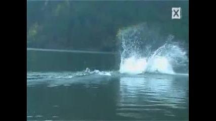 Ходене по вода