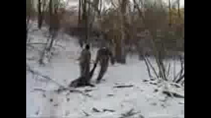 lov na prase
