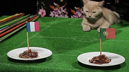 Големият финал Франция - Португалия! Жо Тем предрече европейския шампион!