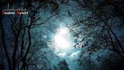 Akritis (germany) - Эта Ночь!