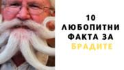 10 любопитни факта за брадите