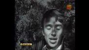 Стефан Воронов - Дъжд От Весели Стрели