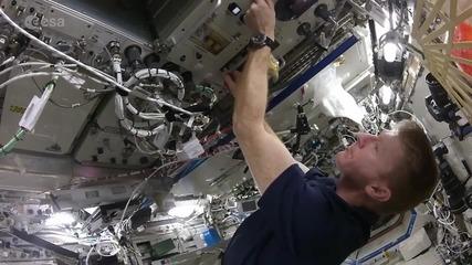 Space: Huston, we have a breakfast – British astronaut Tim Peake scrambles eggs aboard ISS