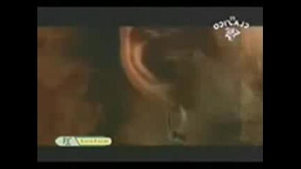 Спомняте ли си тази песен ?