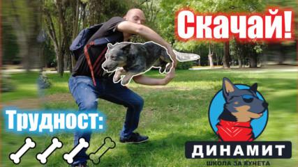 Супер трик за вашето куче!