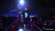 Aleksander Emelianenko - Highlights-knockouts