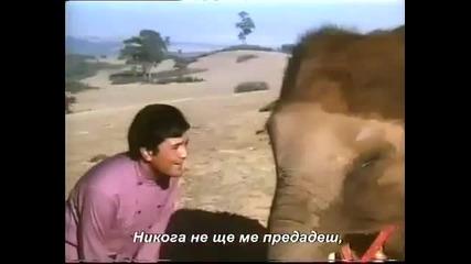 Песен от Филма Слона мой приятел + превод
