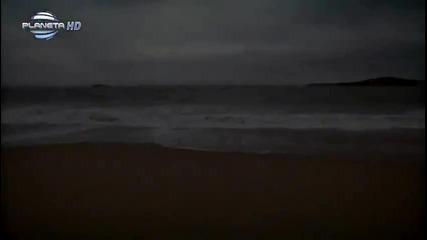 Райна - Ще кажа да ( Официално видео ) H D