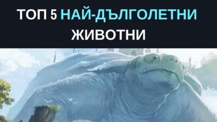 Топ 5 на най-дълголетните животни
