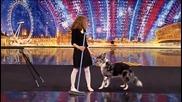 Кучето, което изправи публиката на крака H D