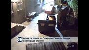 """Мечка се опита да """"открадне"""" контейнер за боклук в Колорадо Спрингс"""