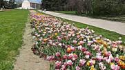 Варна - Морската Градина / Varna - Sea Garden 004