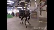 Муле - робот носи 180 кг багаж, не се инати ! Смях !